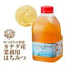 業務用 カナダ産蜂蜜(はちみつ)2kg純粋蜂蜜