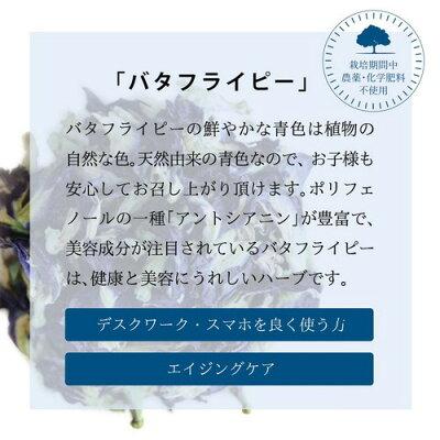バタフライピーの鮮やかな青色は植物の自然な色/天然由来/ポリフェノールの一種アントシアニンが豊富
