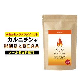 カルニチン+HMB&BCAA ダイエットサプリメント 燃焼系ダイエット αリポ酸 ブラックジンジャー サラシアエキス 白インゲン デキストリン ジム 運動