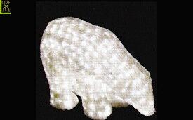 【LEDモチーフ】【20 】LED クリスタル 白クマ【A】【ベアー】【3D】ハイクオリティーシリーズのくまさん♪全身にコーティング加工!輝きは最高です♪【2012年新作】【送料無料】【大人気】【イルミネーション】【クリスマス】【LED】【大人気】