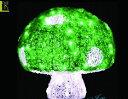 【20 】クリスタル キノコ グリーン【Lサイズ】【LED】【きのこ】【野菜】【童話】今年の新作キノコシリーズ!カラー…
