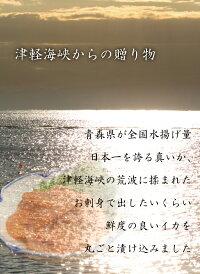 真いか塩辛甘塩仕立て120g×2青森県産スルメイカ津軽海峡下北半島赤