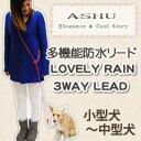 Rain_3s_smn
