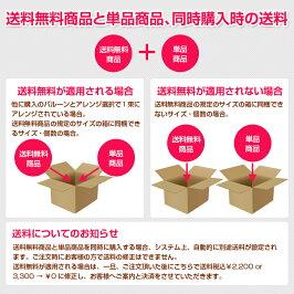 送料無料商品と単品商品の同時購入について