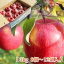 【りんご お歳暮 送料無料】 青森県 弘前産 葉とらずサンふじ 3kg (8〜12個入)平均糖度15度 お歳暮 リンゴ 御歳暮 お…