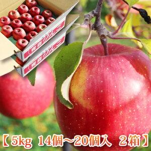 2020【お歳暮 サンふじりんご 10kg 送料無料】青森県弘前産 葉とらずサンふじ 5kg×2箱(合計10kg)(14個〜20個×2箱) 林檎 平均糖度15度 リンゴ 御歳暮 お年賀 贈答用 青森県産りんご ひろさき農園