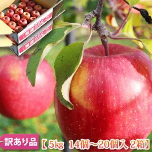 [2020 訳あり]【葉とらずふじ りんご10kg 送料無料】青森県 弘前産 りんご 葉とらずサンふじ 5kg×2箱(合計10kg)リンゴ 林檎 ご家庭用/産地直送
