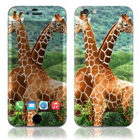 【お取寄せ】 iPhone6/6Plus/6s/6sPlus スキンシール DecalSkin [AN23/キリン] デコシール デコシート 背面シール iPhone 6 6Plus 6s 6sPlus iPhone6 iPhone6Plus iPhone6s iPhone6sPlus 送料無料