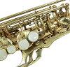 SPLENDA Alto Saxophone SAS-104 SPLENDOR