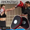 パンチングミット ボクシング 格闘技 空手 ミット トレーニング キックボクシング 練習 左右セット テコンドー 総合格…