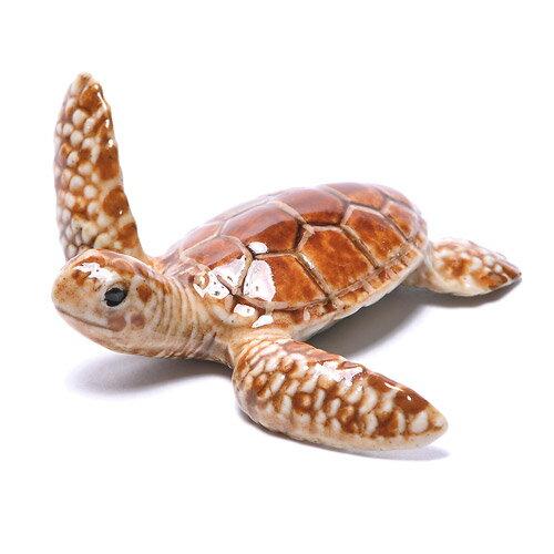 ■ 【KLIMA クリマ】 OC SEA TURTLE (OC ウミガメ)