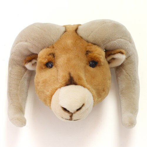 ANIMAL HEAD RAM (アニマル ヘッド ラム) 【送料無料】 【AS】