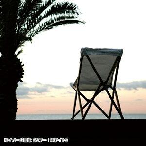 【ダルトンDULTON】WOODENBEACHCHAIRWHITE(ウッデンビーチチェアーホワイト)100-248【送料無料】【ポイント10倍】
