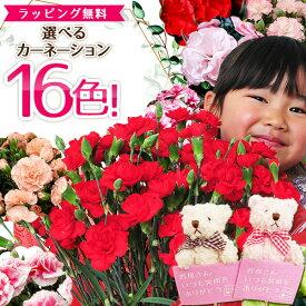 母の日 カーネーション 赤 レッド ピンク さくらもなか オレンジ パープル イエロー など鉢植え クマのぬいぐるみピック付き 選べる15色 あす楽便対応 母の日 ギフト プレゼント 母 5号サイズ 送料無料 ボリューム満点 鉢花カーネーション 花 2021年