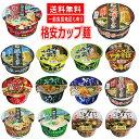 新着 にぎわい広場 格安カップ麺 スナオシ レギュラーサイズ 12種×各1個 12個セット 関東圏送料無料