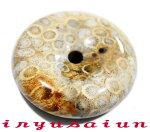 天然珊瑚(サンゴ)化石平安扣