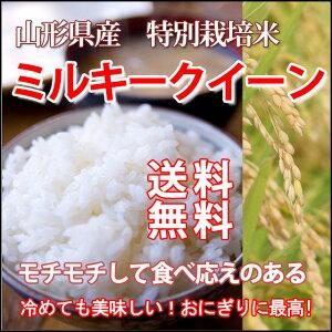 令和 2019年新米 ミルキークイーン 米 新米 新米令和元年 白米 10kg 送料無料 山形 山形県 31年 新米予約 令和新米 令和元年新米 令和元年 無洗米 玄米 お米 5キロ 10kg 10キロ 農産物 予約