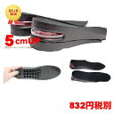 Insole015