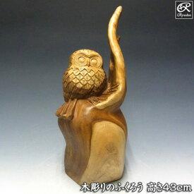 楠 木彫りふくろう 高さ43cm 木彫り 置物 梟 フクロウ 縁起物 [Ryusho]