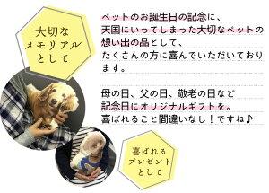 写真でオリジナルクッションMオーダーメイド愛犬の写真で愛猫の写真で大切なペットの写真で/家族写真/想い出/プレゼントに最適メモリアルグッズ喜んでもらえる素敵なプレゼント