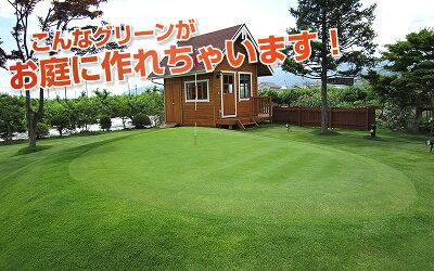 こんなグリーンがお庭に作れちゃいます!