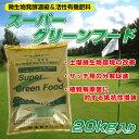 /送料注意/芝生用微生物発酵濃縮&活性有機肥料 スーパーグリーンフード 20kg入り 粉タイプ