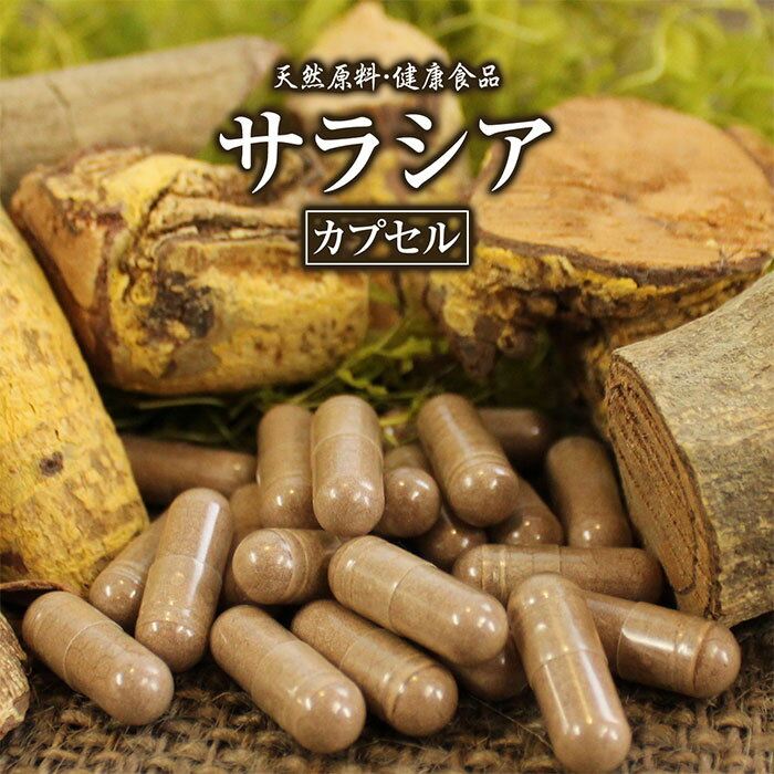 サラシアカプセル(220粒)天然ピュア原料そのまま健康食品/サラシア,さらしあ※ネコポス不可