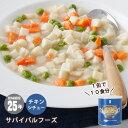 非常食サバイバルフーズチキンシチュー(大缶1号缶=約538g)[約10食分]【賞味期限2041年3月】(クリームシチュー)