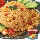 非常食 オニシのナシゴレン 80g ハラール認証 アルファ米スタンドパック チャーハン 炒飯 辛い アジアンご飯 エスニッ…