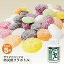 サクマドロップス防災用プラボトル(サクマ製菓/5年保存/非常食/飴/キャンディー)