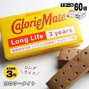 携帯食 保存食 カロリーメイトロングライフ[2本入×60個セットのケース販売]チョコレート味(大塚製薬 非常食 保存食)【賞味期限2022…