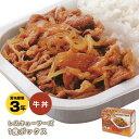 レトルト非常食レスキューフーズ1食ボックス『牛丼』(非常食/ホリカフーズ/防災)
