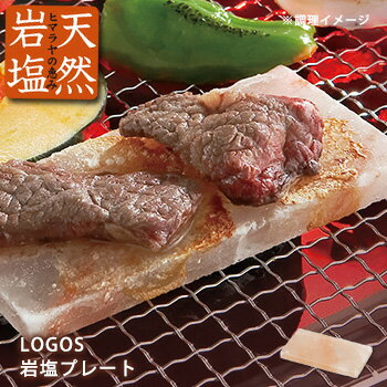 LOGOS岩塩プレート(登山 ロゴス No.81065990)
