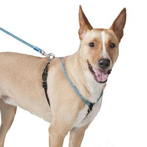 スポーティーなハーネス H5D ロープウォーカーハーネス XXS  全3色 【犬/胴輪/お散歩】