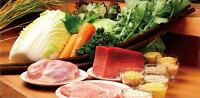 九州の鶏肉を使用マザープラスチキン幼犬用1kgアニマル・ワン【正規品/無香料/子犬/国産】