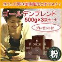 レギュラーコーヒー ゴールデンブレンドセット【粉】(500g×3袋)今ならサラシア紅茶プレゼント付