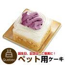 新入荷誕生日ケーキクリスマスケーキワンちゃん用犬用ワンちゃん用コミフ紅いもと豆乳のショートケーキペットケーキ
