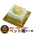 新入荷誕生日ケーキクリスマスケーキワンちゃん用犬用ワンちゃん用コミフかぼちゃと豆乳のショートケーキペットケーキ