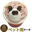 新入荷誕生日ケーキクリスマスケーキワンちゃん用犬用ワンちゃん用コミフやさしいスイーツ豆乳イチゴペットケーキ