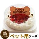 誕生日ケーキ バースデーケーキ 犬用 ワンちゃん用 コミフ いちごのバースデーケーキ ペットケーキ 送料無料(※一部地…
