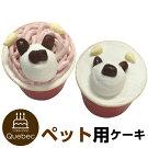 新入荷誕生日ケーキクリスマスケーキワンちゃん用犬用ワンちゃん用コミフやさしいスイーツ豆乳プレーンペットケーキ