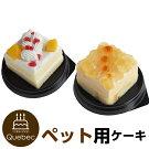 新入荷誕生日ケーキクリスマスケーキワンちゃん用犬用ワンちゃん用コミフやさしいスイーツリンゴとムースペットケーキ