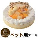 誕生日ケーキ 記念日ケーキ バースデーケーキ ワンちゃん用 ネコちゃん用 レアチーズ ペットケーキ ジャペル
