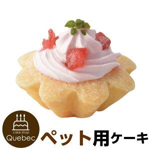 プチタルト 苺のタルトケーキ 誕生日ケーキ バースデーケーキ 犬用 ワンちゃん用 ペットケーキ (ペットライブラリー or partnerfoods)