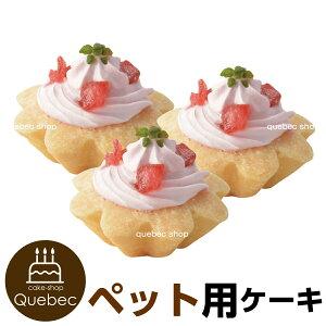 プチタルトセット(苺のタルト) 3個 誕生日ケーキ バースデーケーキ 犬用 ワンちゃん用 ペットケーキ (ペットライブラリー or partnerfoods)