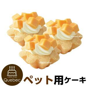 プチタルトセット(チーズのタルト) 3個 誕生日ケーキ 犬用 ワンちゃん用 ペットケーキ (ペットライブラリー or partnerfoods)
