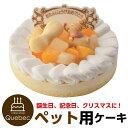 誕生日ケーキ 記念日ケーキ バースデーケーキ ワンちゃん用 ネコちゃん用 レアチーズ ...