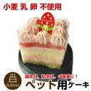 大人気 (コミフ) 誕生日ケーキ バースデーケーキ ワンちゃん用 犬用 ワンちゃん用 コミフ やさしいスイーツ いちごの…
