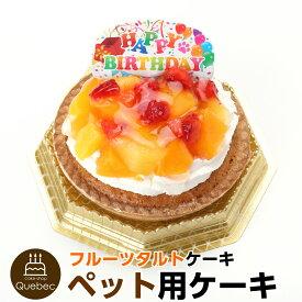 誕生日ケーキ バースデーケーキ 犬用 ワンちゃん用 コミフ フルーツタルトバースデーケーキ ペットケーキ