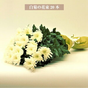 お供え 花 白菊の花束 20本 献花 仏花 墓花 お供え用切り花 菊の花束